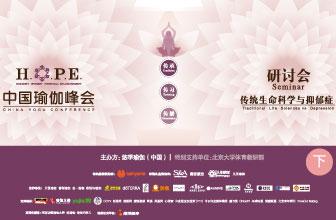 2016中国瑜伽峰会(下)