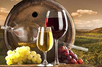世界名酒品鉴:葡萄酒上
