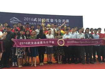 2016武汉速度赛马年中大收官