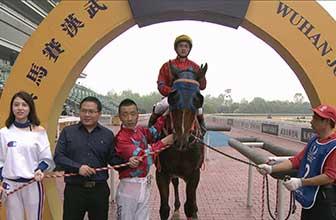 冠军骑师王迪携天鹿最终夺冠
